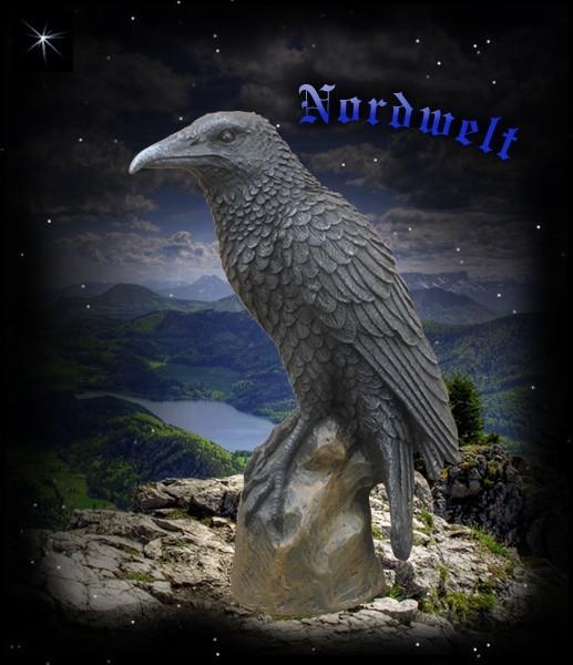Odin's Raven on rock