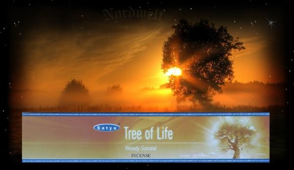 Räucherstäbchen Incense sticks Lebensbaum Tree of Life Baum des Lebens