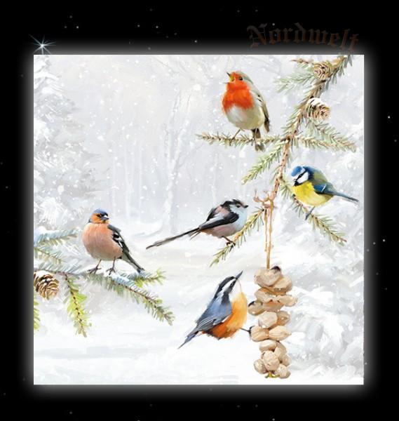 Servietten Brauchtum Julfest Vögel Winterlandschaft Singvögel im Schnee