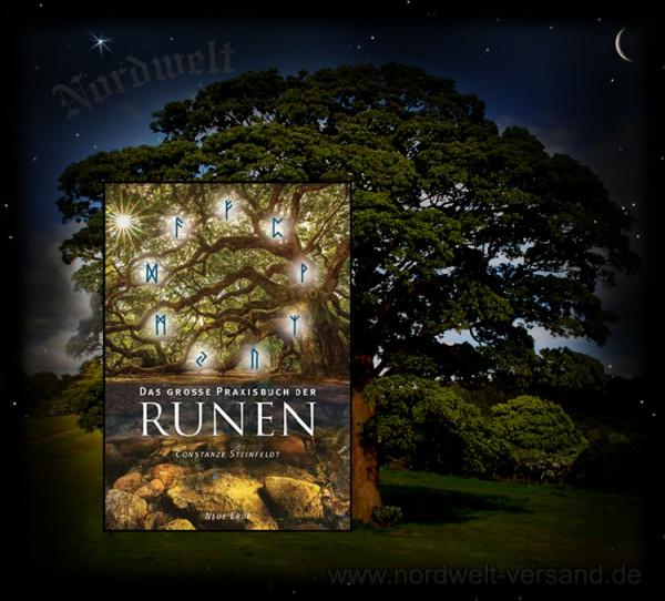 Das große Praxisbuch der Runen Constanze Steinfeld Runenkunde lesen lernen Runenarbeit