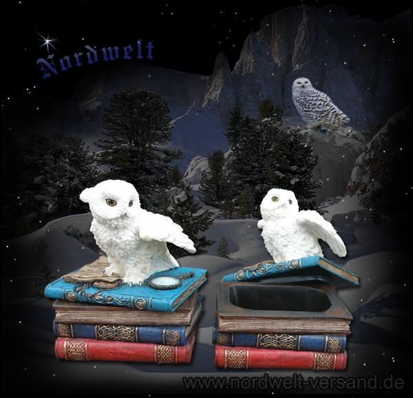 Schuckdose mit Eule Schneeeule und Bücher Polyresin Schmuckkästchen