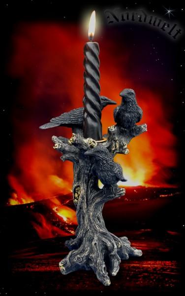 Odins Raben Hugin und Munin Rabengott Göttervater Wotan
